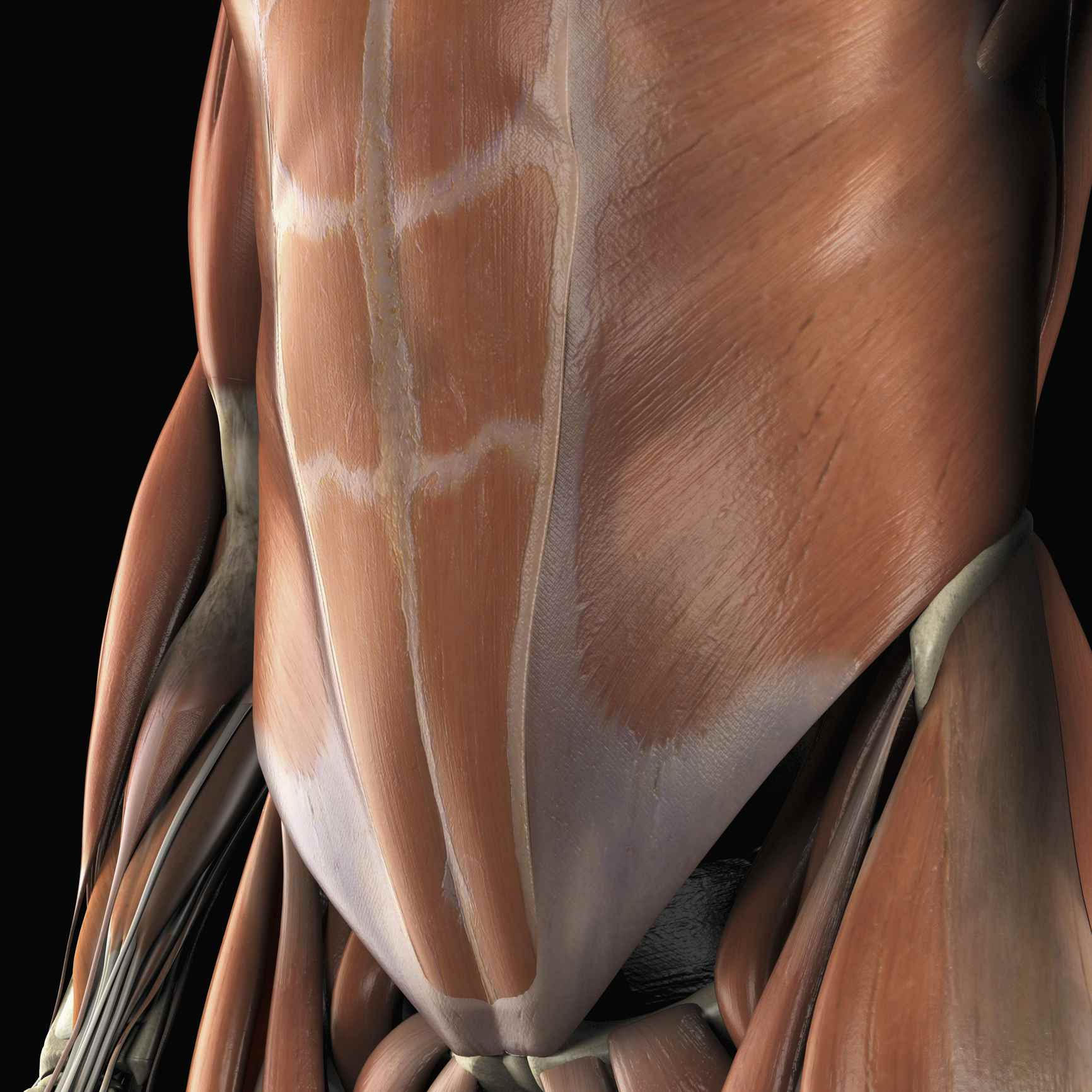6 Exercises to Relieve Lower Back Pain